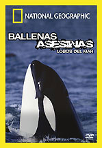 National Geographic: Orcas, Lobos del Mar [MU][Español][2.4Gb] Foto_10273